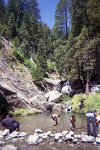 Tons of people near Hidden Falls on Saturday.